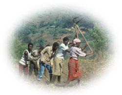 rocks-for-crops-fieldwork