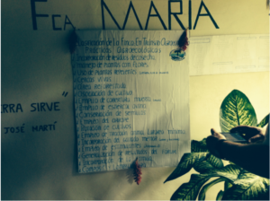 A list of agroecology practices Maria's family farm is using as part of the transition to ANAP approved sustainable farming.